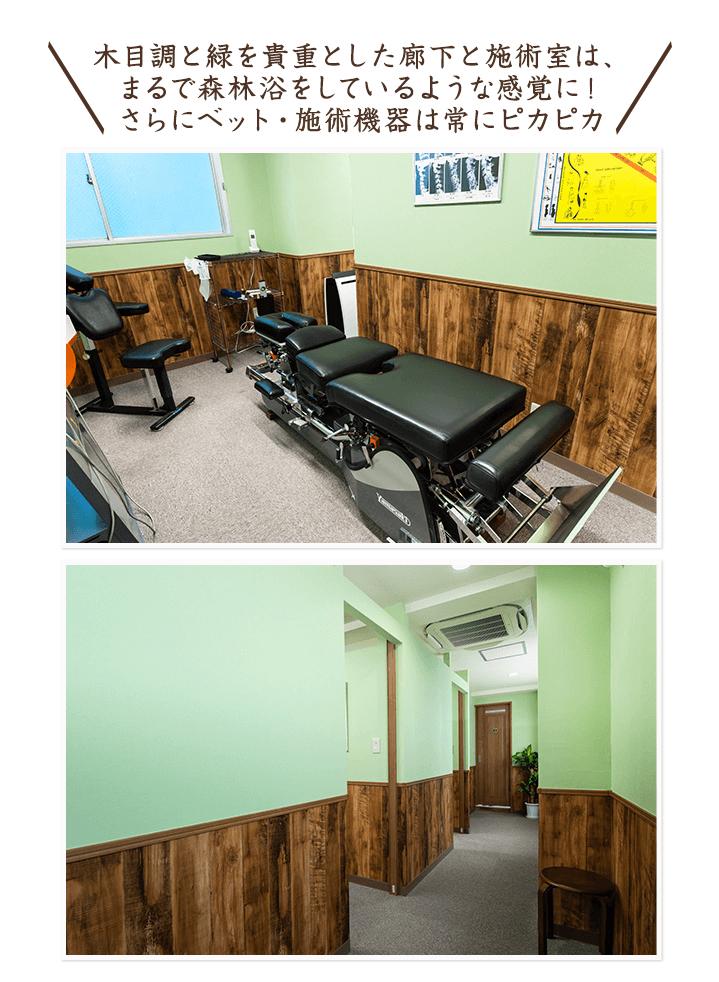 木目調と緑を貴重とした廊下と施術室は、まるで森林浴をしているような感覚に!さらにベット・施術機器は常にピカピカ